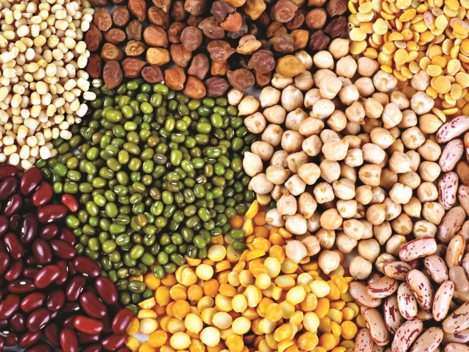 Масляно-жировые культуры
